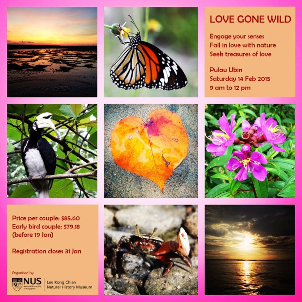 Promo Love Gone Wild