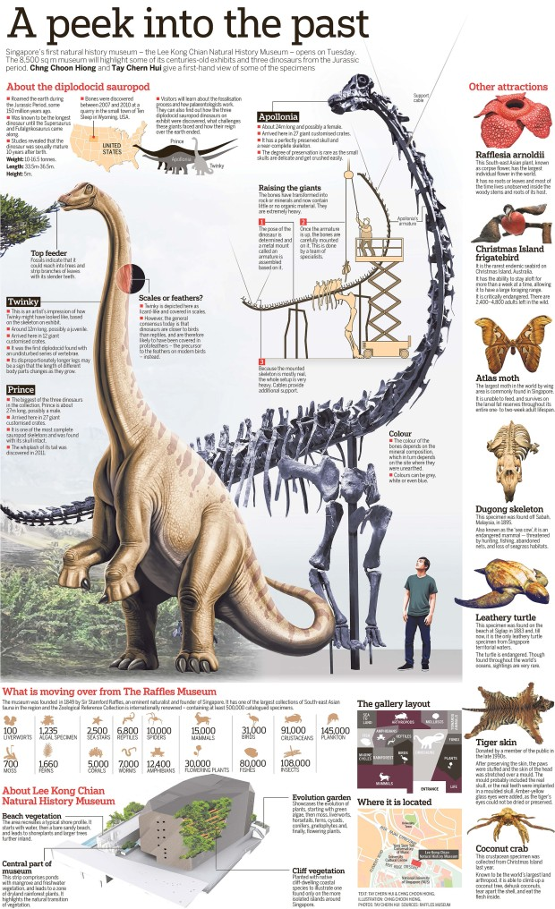 ST Infographic 25 April 2015