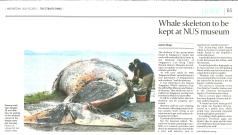 Straits Times 2015-07-15