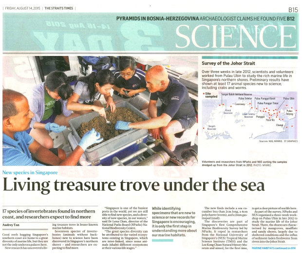 Straits Times 2015-08-14 Living Treasures Under the Sea (CMBS) (1)