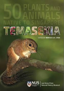 Temasekia cover