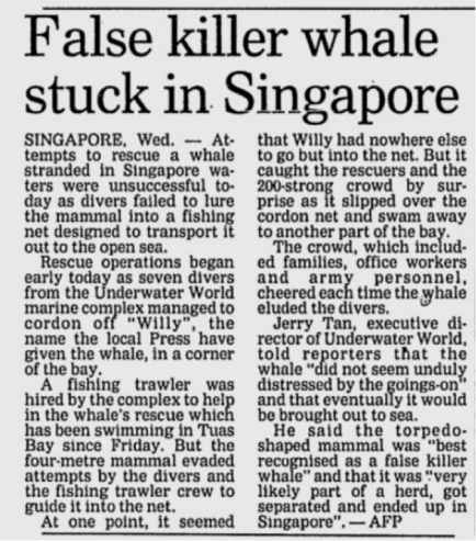 Screenshot of Newspaper article on Willy