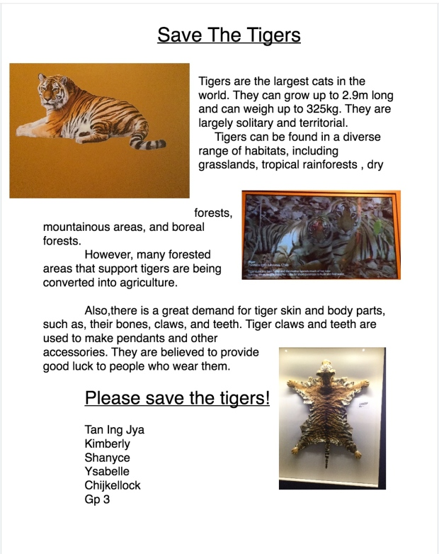 tigerposter